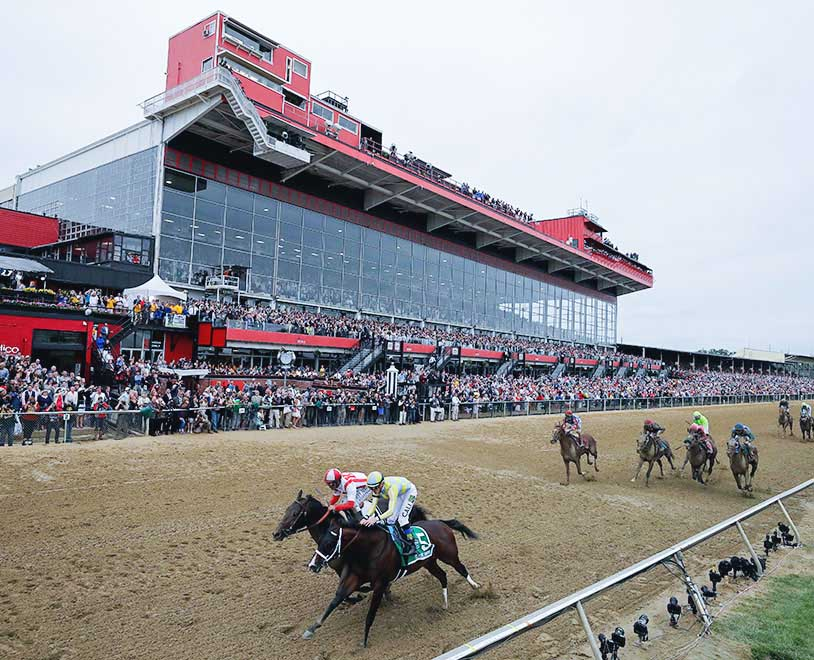 How to bet on the Preakness Stakes
