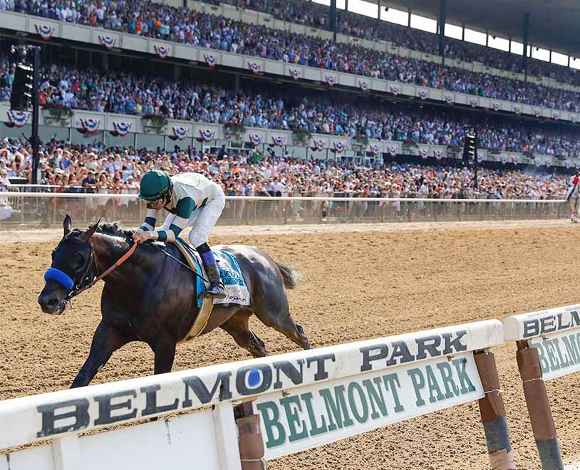Belmont Stakes Betting Guide