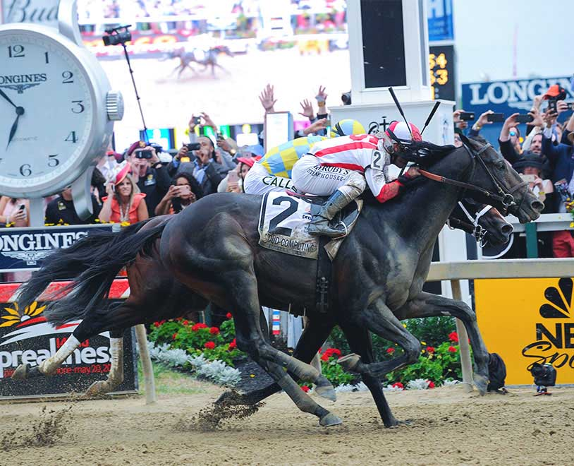 Preakness Stakes Betting Guide