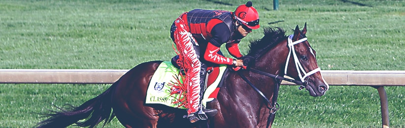 Early Belmont Stakes Preview: The Contenders - Bovada
