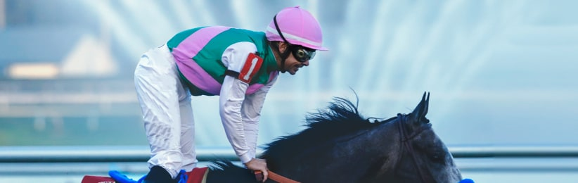 Early Breeders' Cup Preview: Gun Runner for Hire| Bovada Racebook