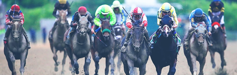 Cloud Computing Surprises at 2017 Preakness Stakes - Bovada