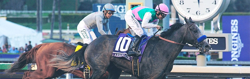 How to Bet the 2017 Breeders' Cup Classic - Bovada Racebook