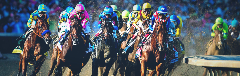 Horse Racing Highlights in 2016 - Bovada Casino Articles