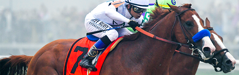 2018 Belmont Stakes Odds: Justify on Top in the Slop?