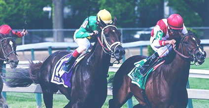 Bet on Belmont Stakes odds  this Saturday!